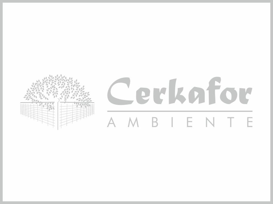 Logotipo Cerkafor_cliente