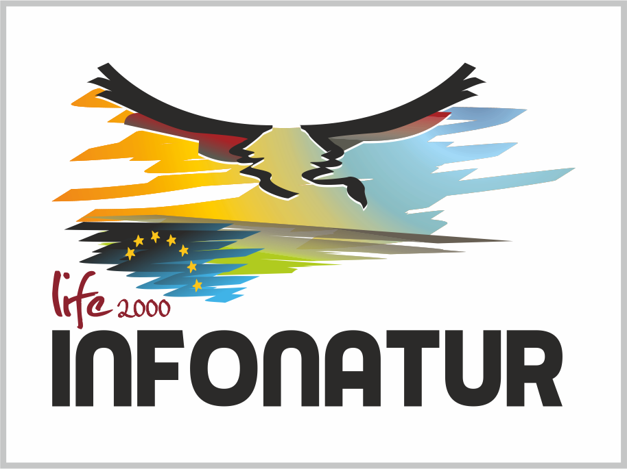 Logotipo Infonatur_design